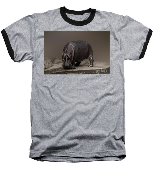 Mr. Hippo Baseball T-Shirt by Charuhas Images