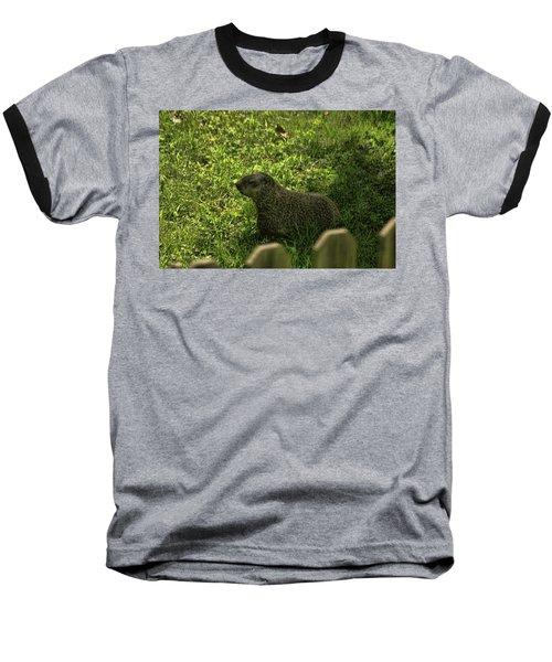 Mr Woodchuck Baseball T-Shirt