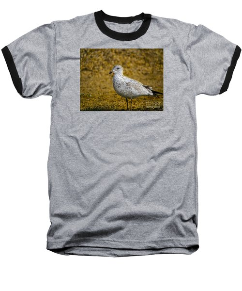 Baseball T-Shirt featuring the photograph Mrs. Seagull by Melissa Messick