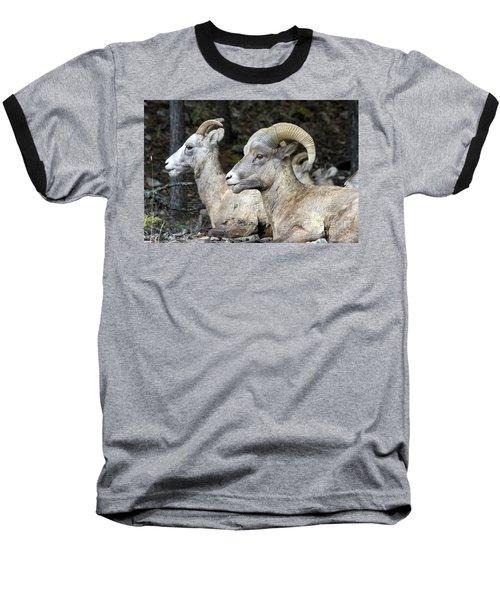 Mt Sheep  Baseball T-Shirt