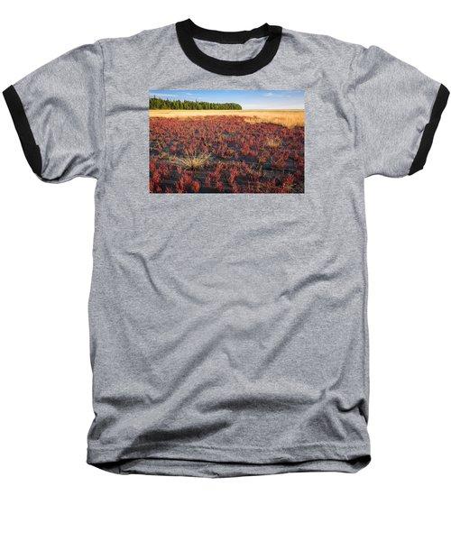 Mudflat Garden Baseball T-Shirt