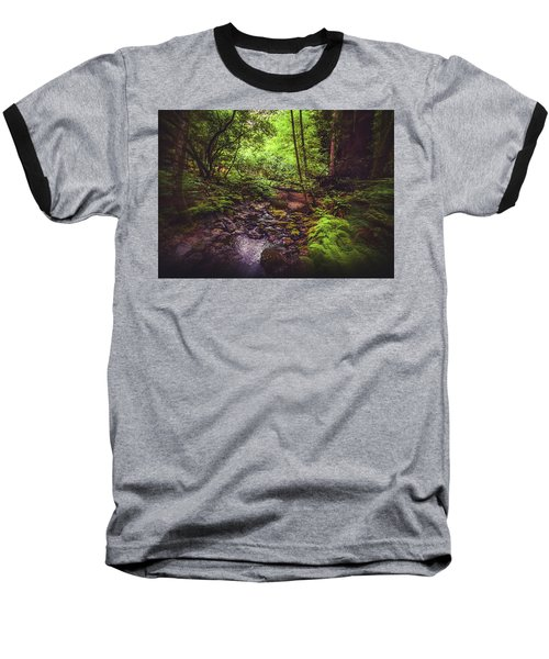 Muir Woods No. 3 Baseball T-Shirt by Laura DAddona