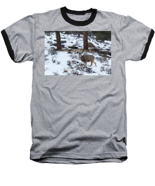 Mule Deer - 8922 Baseball T-Shirt