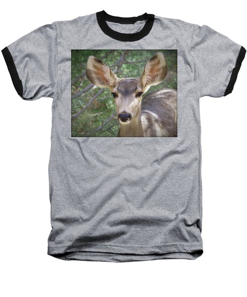 Mule Deer Baseball T-Shirt