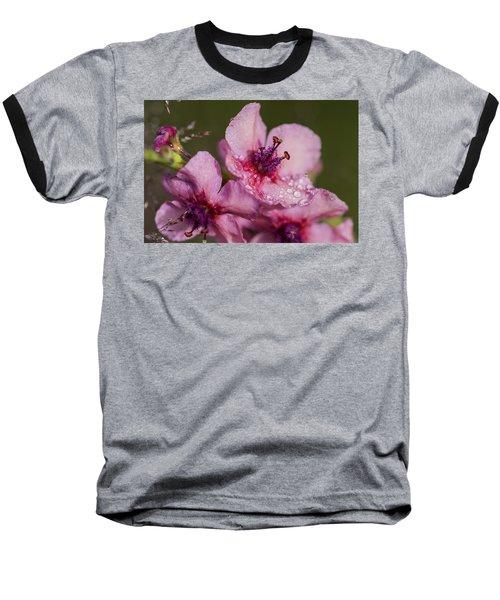 Mullein In The Mist Baseball T-Shirt