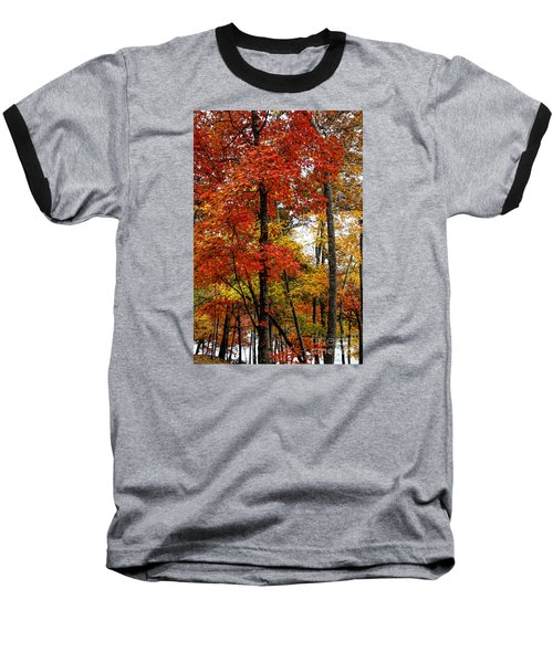 Multi-colored Leaves Baseball T-Shirt