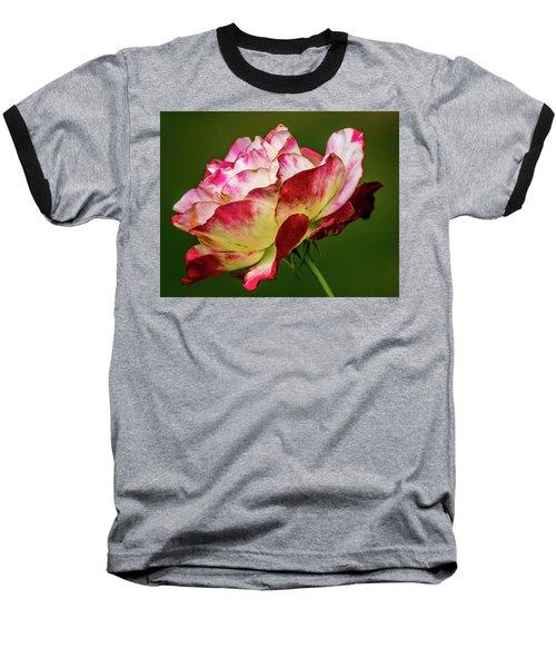 Multi-colored Rose Baseball T-Shirt