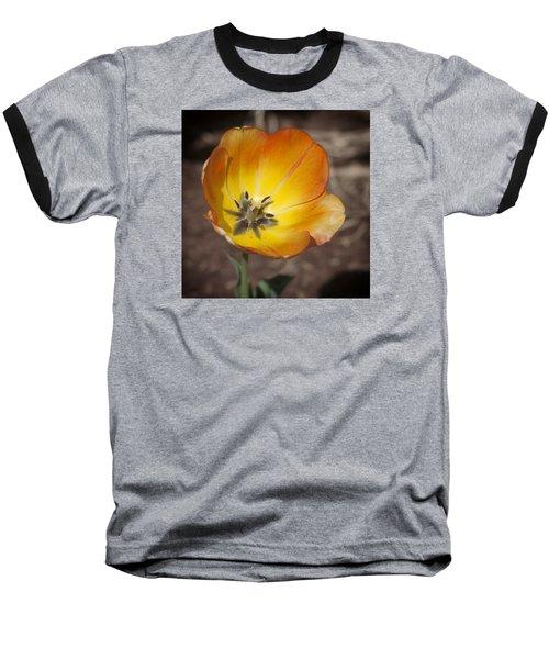 Multihued Baseball T-Shirt by Morris  McClung