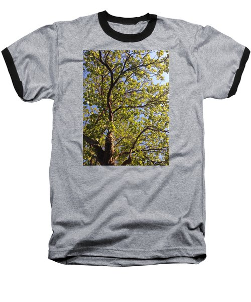 Baseball T-Shirt featuring the photograph Multiplicity  by Nora Boghossian