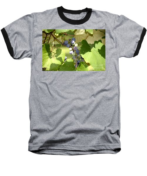 Muscadine Grapes Baseball T-Shirt