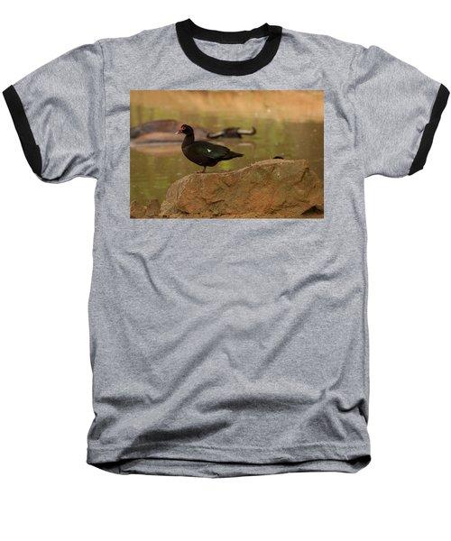 Muscovy Duck Baseball T-Shirt