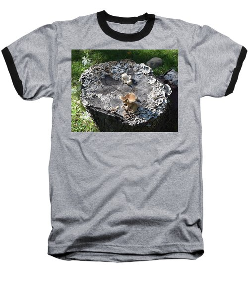 Mushroom Stump Baseball T-Shirt