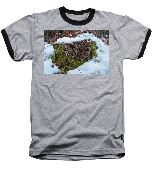 Mushrooms And Moss Baseball T-Shirt