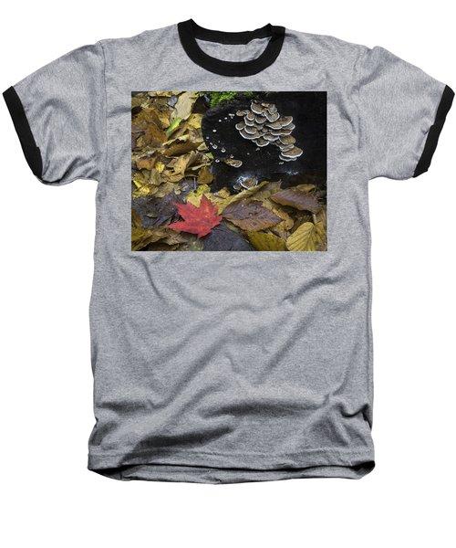 Mushrooms Baseball T-Shirt