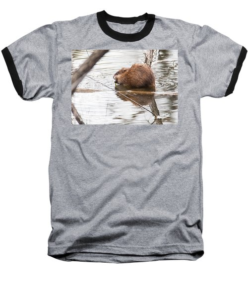 Baseball T-Shirt featuring the photograph Muskrat Spring Meal by Edward Peterson