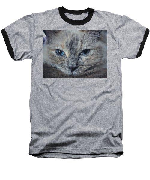 Mustachioed Cat Baseball T-Shirt by Karen Stahlros