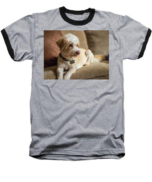 My Best Friend Baseball T-Shirt
