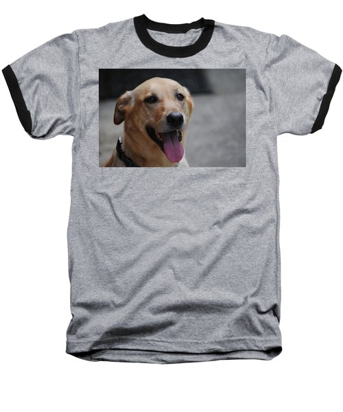 My Dog Ubu Baseball T-Shirt