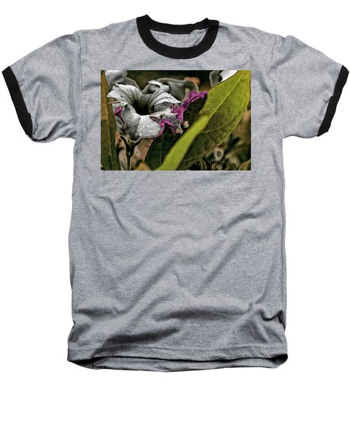 My How Your Beauti Is Evolving Baseball T-Shirt