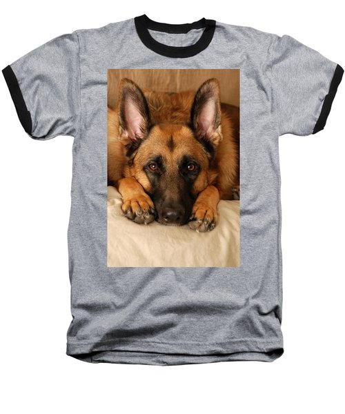 My Loyal Friend Baseball T-Shirt