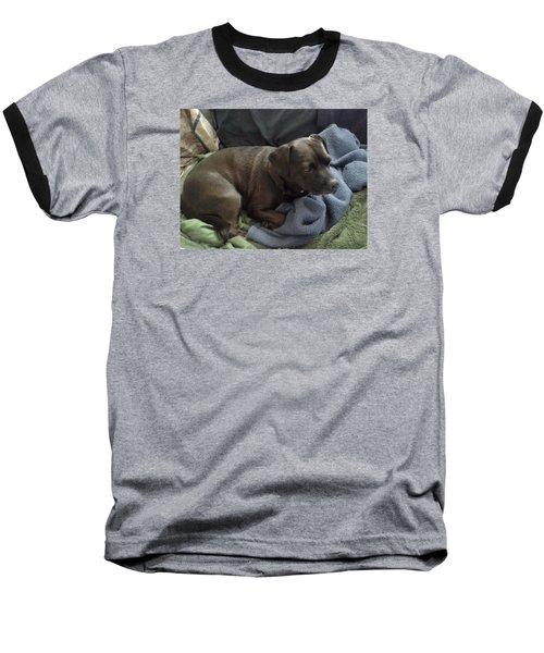 My Puppy Bella Baseball T-Shirt