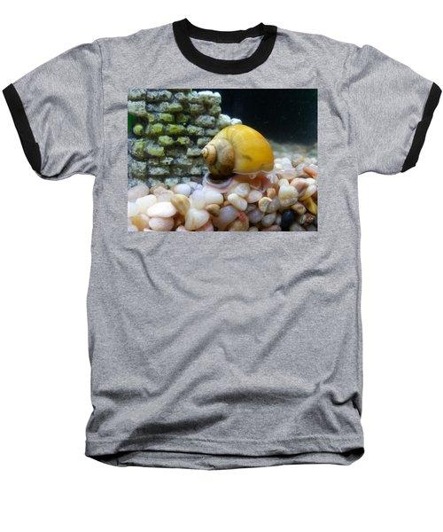 Baseball T-Shirt featuring the photograph Mystery Snail by Robert Knight