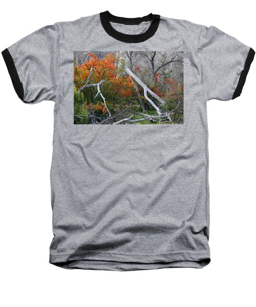 Mystical Woodland Baseball T-Shirt