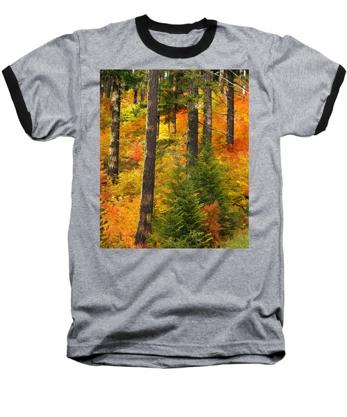 N W Autumn Baseball T-Shirt by Wes and Dotty Weber