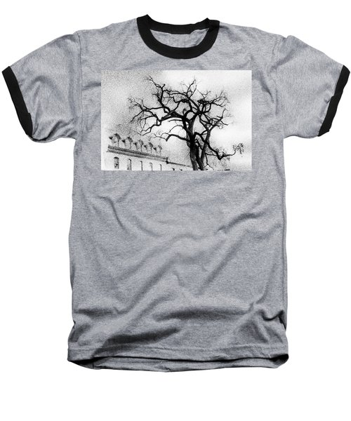 Naked Tree Baseball T-Shirt by Celso Bressan