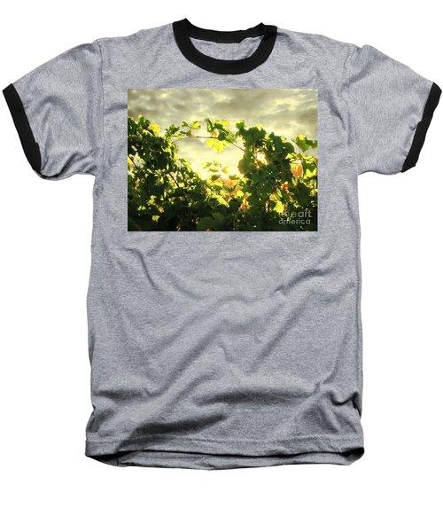 Napa Dusk Baseball T-Shirt