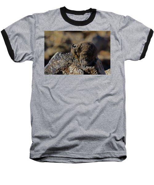 Napping American Pika - 4694 Baseball T-Shirt