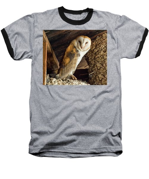 Napster Baseball T-Shirt by Scott Warner