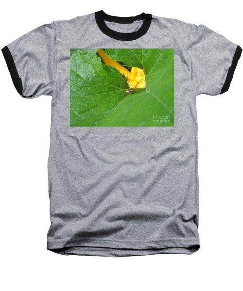 Narrow Leaf Gorge Baseball T-Shirt