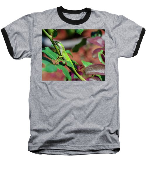 Native Anole Baseball T-Shirt by Stefanie Silva