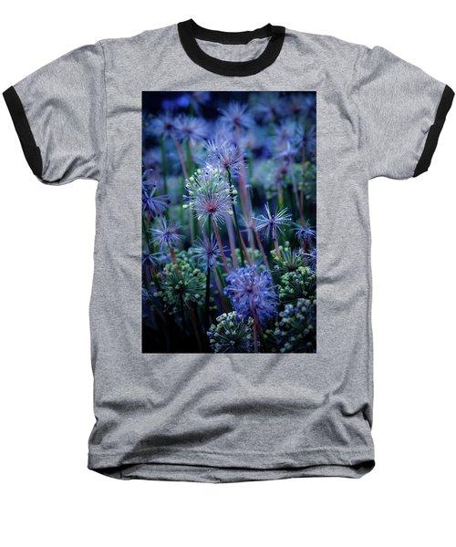 Natural Fireworks 4791 H_2 Baseball T-Shirt