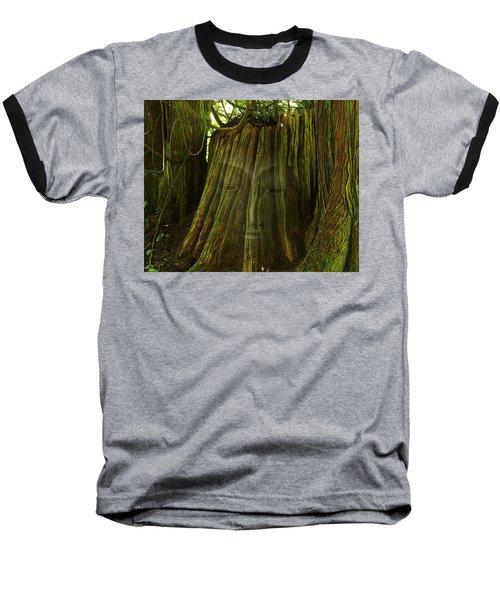 Nature Buddha Baseball T-Shirt by I'ina Van Lawick