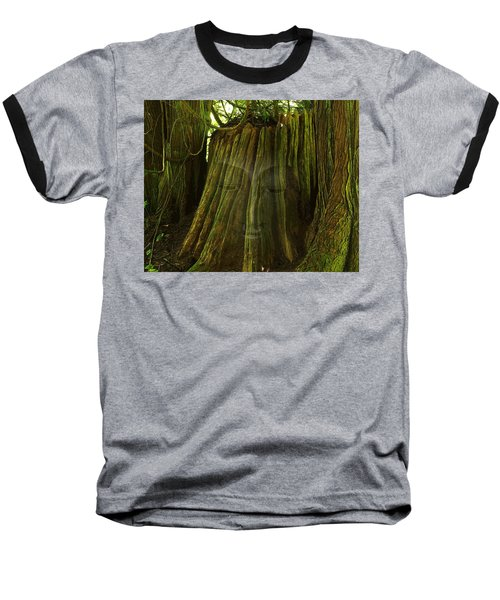 Nature Buddha Baseball T-Shirt