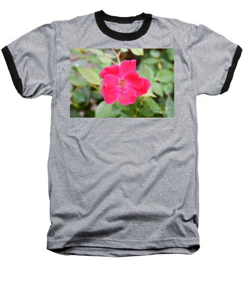 Baseball T-Shirt featuring the photograph Nature - Colorful Flower Gifts  by Ray Shrewsberry