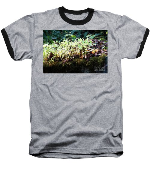Nature Finds A Way Baseball T-Shirt by Rebecca Davis