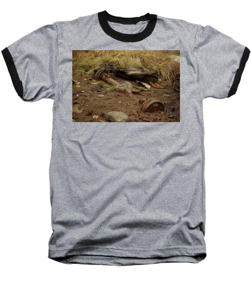 Nature Wins Baseball T-Shirt