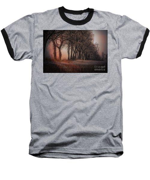 Nature Winter Bare Trees Color  Baseball T-Shirt