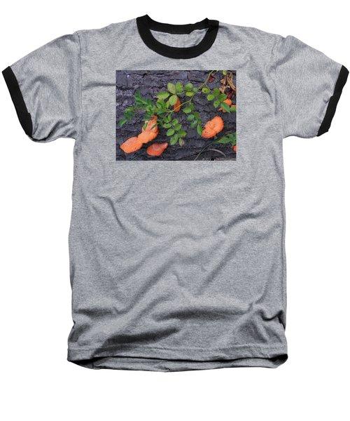 Nature's Beauty Baseball T-Shirt by Christine Lathrop