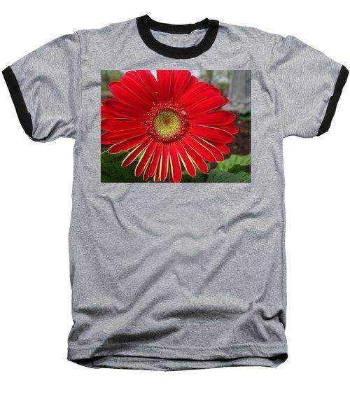 Natures Best Baseball T-Shirt
