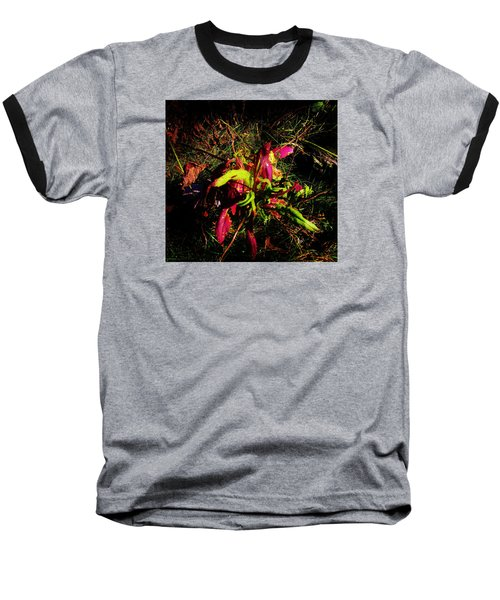 Nature's Dance Baseball T-Shirt
