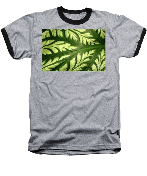 Nature's Design Baseball T-Shirt
