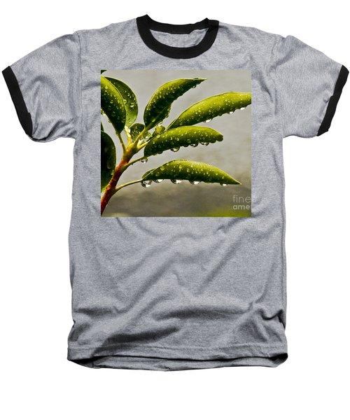Early Morning Raindrops Baseball T-Shirt by Carol F Austin
