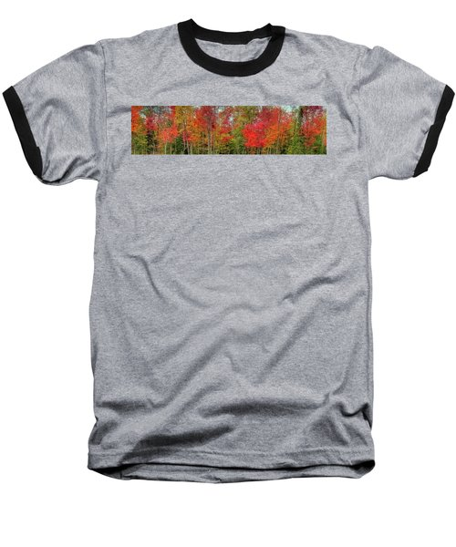 Baseball T-Shirt featuring the photograph Natures Fall Palette by David Patterson