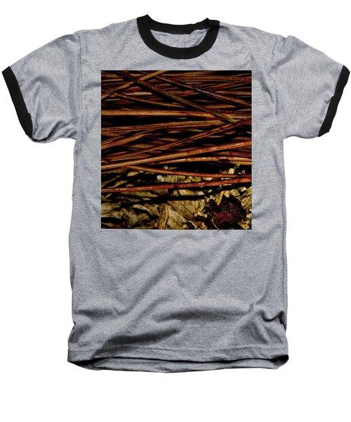 Nature's Lattice Baseball T-Shirt by Gina O'Brien