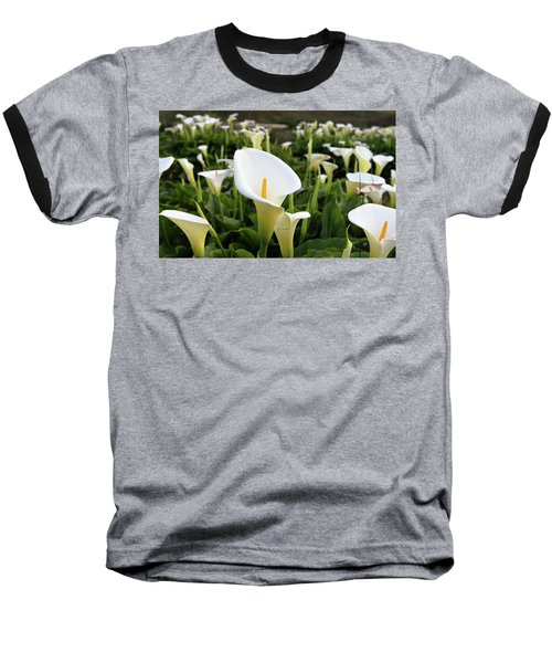 Natures Perfection Baseball T-Shirt