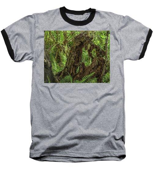 Nature's Sculpture Baseball T-Shirt